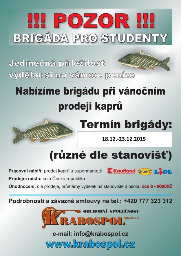 Plakt brigda ryby 2015